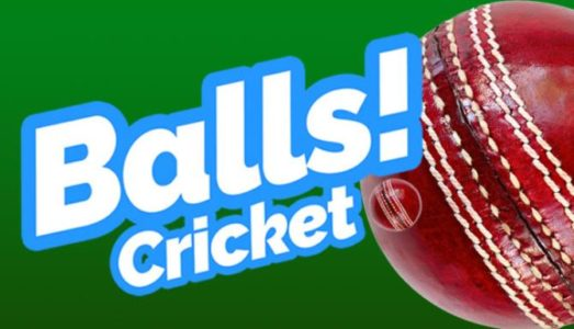 Balls! Virtual Reality Cricket Free Download